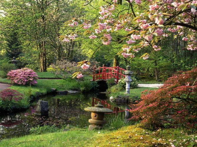 giardino feng shui - studio dizeta - Piccolo Giardino Feng Shui